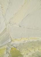 2006, olieverf op doek, 35-25 cm, part.coll.