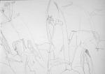 2001, potlood op papier, 21-29 cm,Teylers museum