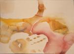 2004,aquarel-papier